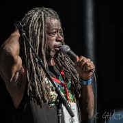 CannaFest 2016 Michael Williams